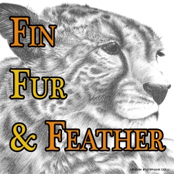 Fin, Fur & Feather