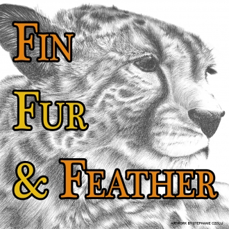 Call for Submissions - Fin, Fur & Feather